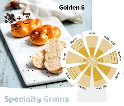 Softgrain Golden 6